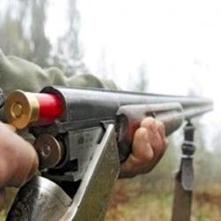 Оружие находится также в разделах